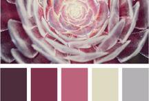 Colour / by Emma-jane Sullivan