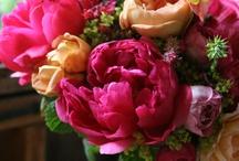 Flower Love  / by Melissa Protinick