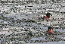 lumpur lapindo bukan lumpur sidoarjo