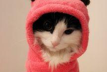 Schön warm anziehen...