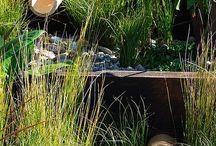 Sustainable garden / by Sharben