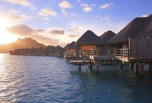 Tahitian Eco-Friendly Initiatives / We'll share the commitment throughout the #IslandsOfTahiti to protect and foster the natural beauty and habitants of French Polynesia. Did you know that many hotels and resorts in the Islands of Tahiti have proactive eco-friendly initiatives?