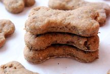 Dog Treats / Treats for dogs with protein allergies, there is no meat (other than fish) in any of these recipes!