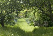 George Cottage / Mood board -  Naturalistic planting