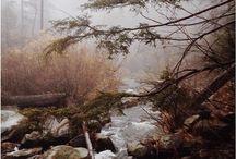 Taumond Februar - Erde und Wasser / Das große Tauen rund um Imbolc, der Keimling versenkt seine Wurzel tief im getränkten Boden, während oben über der Erde der wilde Kampf des Winters mit dem Frühling tobt