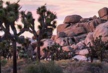 · viajando COSTA ESTE · / California · Washington · Arizona
