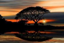 nature/beautiful earth