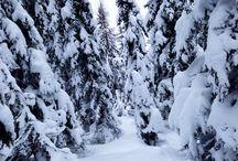 Snowboarding / Schladming