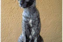 Catscatscats!