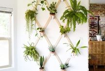 déco mur végétal
