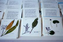 primavera fast food / vegan cookbook with spring edible plants - herbarium + handprinting + cotton bag + typewriter = handmade
