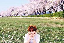 J-Hope || BTS / J-Hope 져이홉 || Jung Hoseok 정호석 || BTS || 1994 || 1.77 || Rapero y Bailarin principal