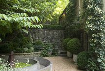 Flowers/terrasse / Garden