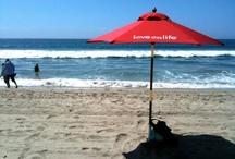 The Beach Boys (and Girls)