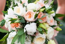 Wedding Blog Features