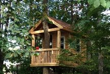 Tree House / by Hite House