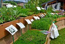 Gartentage am Tegernsee