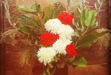 Petal Atelier Floral Design / A collection of our original botanical designs!