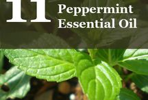 Peppermint Essential Oil / Learn more about peppermint essential oil. We love this essential oil and we hope you enjoy learning about it!