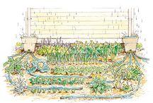 Clever gardening ideas