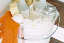 Cleaning Recipes/Ideas / by Rita Balistreri