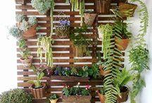 Jardines verticales y terrazas