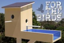 Design birdhouse