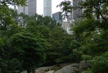 VIPersonal: NY_Central Park