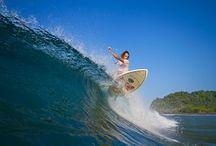 Surf Travel / Surf Travel