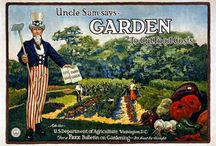 """Organic Gardening / If you are interested in pinning to this board, please, type """"add me"""" in the comments. Please include only organic, earth friendly gardening tips! / by Carrie @ Natural View"""