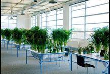 Гид по выбору. Всё для офиса / Большую часть своей жизни, как ни странно, мы проводим не дома, а на работе. Поэтому важно сделать свое рабочее место уютным. Например, превратить свой стол в зеленый оазис. Красиво, да еще и постоянно кислород вырабатывается! Такие интересные идеи мы предлагаем вам в рубрике «Все для офиса».