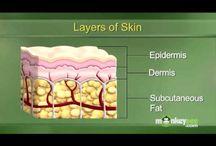 Facial + Skin Care