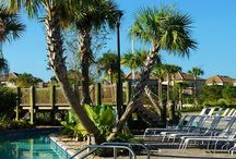 ## Travel: US Florida ## / Everything you want to do and see in Florida USA