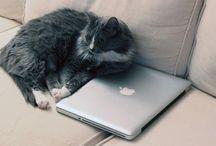 How to update old MacBook