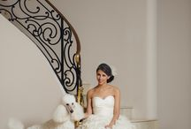 wedding / by Beth Simmons