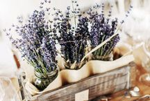 Lavender center piece