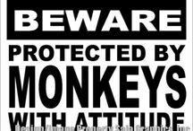 Animal & Wildlife Signs