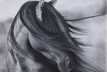 Horses / by Holly Varga