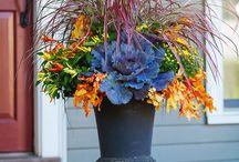 Zahrada - dekorace