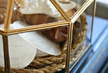 DIY: Cloche / by Southerly Creations