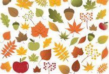 p autumn