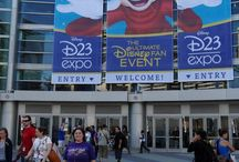 D23 Expo / Everything going on with the D23Expo - 2013 and 2015