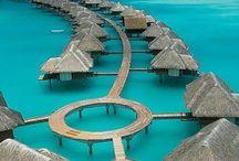 Maldive ecc
