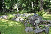 Kivikkopuutarha/ Rockgarden