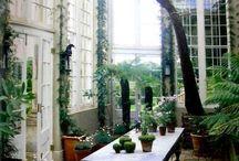 Vinterträdgård