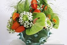Vanda Flower Studio