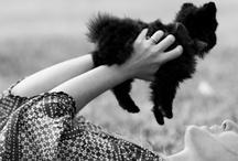 cuddly / by Pam Melendez