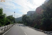 Tirumala Ghat Road / Tirumala ghat roads are two asphalt steep natural slopes ghat roads between Tirupati and Tirumala. They are in Seshachalam Hills range in Pūrva Ghat