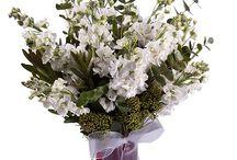 Bursa çiçek siparişi / Bursa çiçekçi leri arasında en iyileri ile işbirliği yapan sitemiz ile sorunsuz bir şekilde Bursa çiçek gönderimi yapabirsiniz.Vermiş olduğunuz Bursa çiçek siparişi aynı gün içerisinde teslim edilmektedir. Tek bir tıkla, güvenli bir şekilde Bursa çiçek siparişi verebilirsiniz. http://www.cicekvitrini.com/cicekler/bursa-cicek-siparisi
