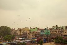 India / All the weird and wonderful things we do when we travel